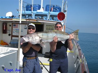 What We Fish For at Sea Star Charters